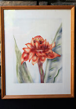 Vintage HAWAIIAN TORCH GINGER FRAMED PAINTING TIP FREEMAN TROPICAL FLOWER HAWAII