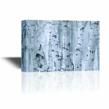 wall26 - Canvas Wall Art - White Birch Trees in the Morning Mist - 24x36 inches