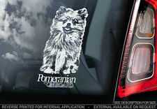 Pomeranian - Car Window Sticker - Dog Sign -V01