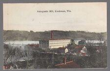 Old Postcard Autagamie Mill in Kaukauna, Wisconsin