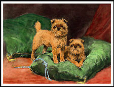 BRUSSELS GRIFFON TWO DOGS  LOVELY VINTAGE STYLE DOG PRINT POSTER
