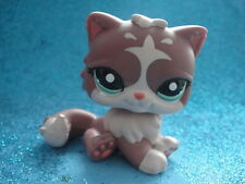 ORIGINAL LITTLEST PET SHOP cat persian 1761 Shipping with Polish