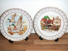 Old Coach House Woolhampton & Ducks In Flight Gainsborough Bone China Plates