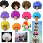 Colorful Party Disco Afro Clown Hair Football Fan Adult Halloween Masquerade Wig