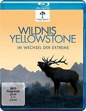 WILDNIS YELLOWSTONE - IM WECHSEL DER EXTREME  BLU-RAY NEU