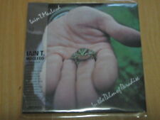 IAIN T. MACLEOD/ IN THE PALM OF PARADISE MINI LP CD NEW