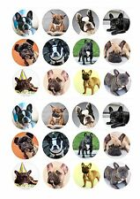 24 Edible cake toppers decorations French Bulldog frenchie dog