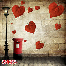 Valentine's Day 10'x10' Computer-painted Photo Background Backdrop SN855B881