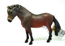 Q5) Collecta (88604) Dartmore Pony Hengst Pferd Pferde Pferdehof Bauernhof