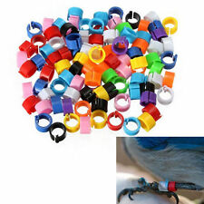 "Pigeon Leg Clip Rings Band ""pack of 100 pcs"""