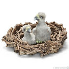 *NEW* SCHLEICH 14635 Baby Bald Sea Eagle Chicks in Nest