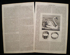 SWAN NICKING RING CUTTING OF BEAKS ANIMAL WELFARE RIGHTS VICTORIAN ARTICLE 1879