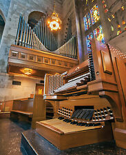 Light and Dark and In Between: 4 Organs in Baltimore, Diane Luchese, organist