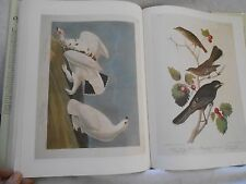 Antique 'BIRDS of North America' Audubon Society 435 Color Plates!!! 1997 LARGE