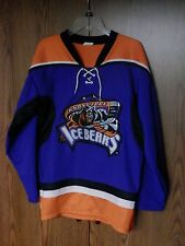 Knoxville Ice Bears Hockey Jersey SPHL sewn logo VGC minor league