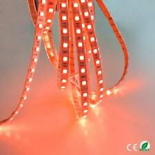 12v 5M RED LED SMD STRIP ROPE RIBBON BRIGHT LIGHT WATERPROOF GARAGE KITCHEN NEW