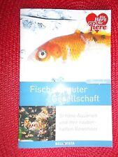 Fische in guter Gesellschaft - Tierratgeber - Schöne Aquarien