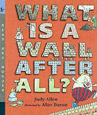 What Is A Wall, After All?,ACCEPTABLE Book