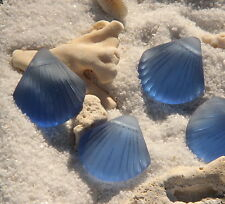 2 pcs~Sea Glass LARGE  Shell Pendant Beads -Light Sapphire ( 29x27mm)~ 2 pcs.