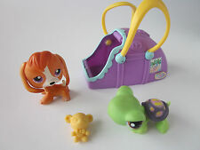 Littlest Pet Shop Sweet 'N Neat #301 Brown Beagle Dog #302 Green Turtle Carrier