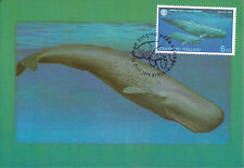 Complete Set 4 maxicards Thailand 1998 Marine Life Ocean Sea Dolpin Whale others