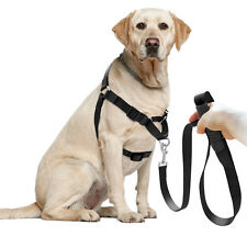 Nylon No Pull Dog Training Harness and Lead No Choke Soft for Dogs Walking S M L