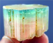 16 Gram Huge Size Terminated Natural Watermelon TOURMALINE Crystal from paprok