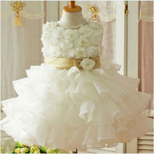 Baby Toddler Girl Clothes Flower Princess Wedding Party Pageant Fancy TUTU Dress
