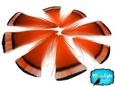 Pheasant Feathers, Orange Golden Pheasant Tippet Feathers - 1 Dozen