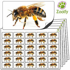 480 Bee Stickers (38 x 21mm) Quality Self Adhesive Animal Labels By Zooify.