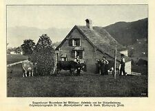 Toggenburger Bauernhaus bei Wildhaus (Schweiz) Historische Aufnahme 1908