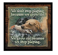 Don't Stop Playing..Dogs Wisecrack Wood Sign Humorous Rustic Wild Wings