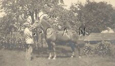 Large Vintage Real Photo- Farm- Farmer- Young Man Holds Horse- 1900s-1920s