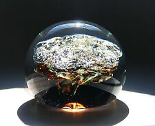 "SEGUSO ITALY VENETIAN MURANO GLASS CRYSTAL LARGE 4 1/4""X3 1/2"" PAPERWEIGHT NEW 1"