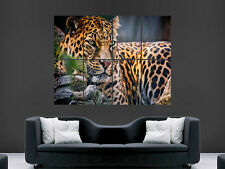 BEAUTIFUL LEOPARD LARGE CAT HUGE LARGE WALL ART POSTER PICTURE  IMAGE