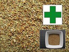 Tanaisie - Remède - 1000 Graines