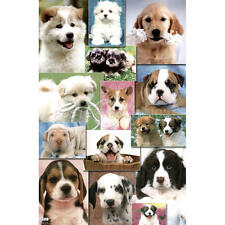 PUPPIES DOGS 2 PHOTO COLLAGE CUTE POSTER PRINT 22x34 FREE SHIPPING