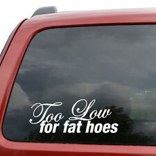 "Too Low For Fat Hoes JDM Car Window Decor Vinyl Decal Sticker- 6"" Wide White"
