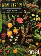 mon jardin et ma maison n°91 noel les eleagnus sapin cognassier neflier
