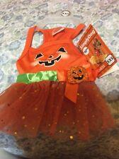Simply Dog Pumpkin Dress XXS