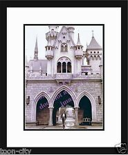 Walt Disney Sleeping Beauty Disneyland Photo Classic NEW picture 8x10 Picture