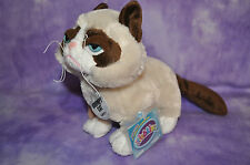 Webkinz RARE  Grumpy Cat NWT~ FAST FREE SHIPPING ~ SOLD OUT!!  FOR CAT LOVERS!!