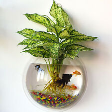 Home Decoration Aquarium Bowl Transparent Wall Hanging Fish Tank Plant Pot Small