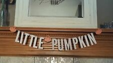Little Pumpkin Banner // Fall Party Decorations // Baby Banner / Birthday Banner