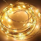 10M 33Ft 100 Leds Starry Copper Wire Warm White LED Lights + DC Power Supply