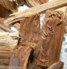 PALO AZUL (BLUE STICK) or KIDNEY WOOD - Famous Detox Herbal Remedy!