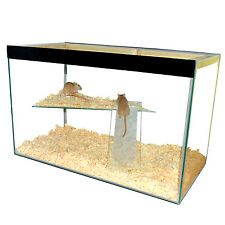 Hamster , Gerbil, Mice Tank with lid and shelf and ladder - tall with wide shelf