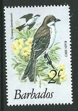 BARBADOS SG623 1979 2c BIRDS   MNH