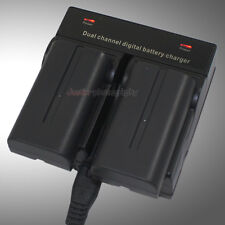 Dual Charger +2x 2.1A Battery NP-F550 NP-F750 For Sony CCD TR TRV DCR CAMCORDER