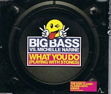 Big Bass vs Michelle Narine cd single: What You Do (Playing With Stones) 2 mixes